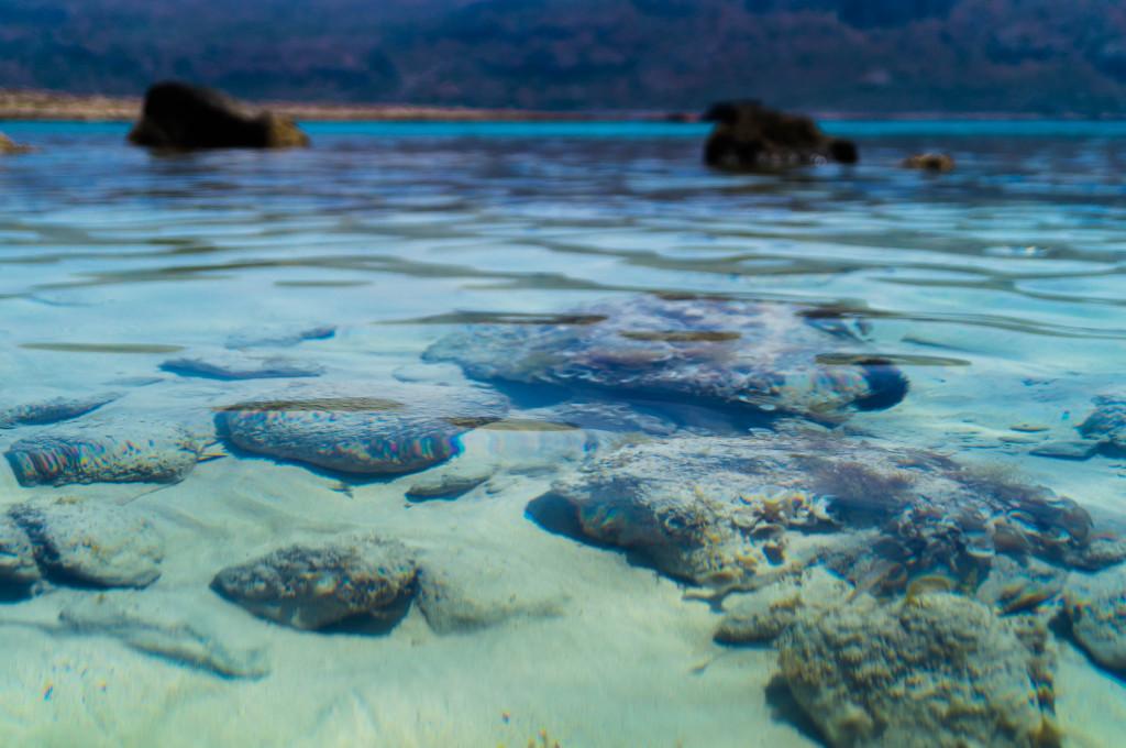 Samvousa Kreta Griechenland Foto