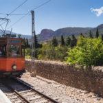 Mallorca Paguera Urlaub 4