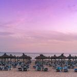 Mallorca Paguera Urlaub 1